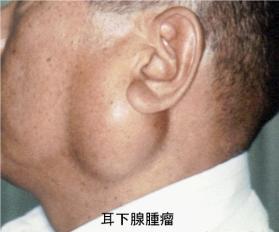 たかはし耳鼻咽喉科・アレルギー...